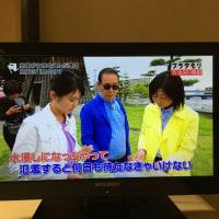東海道53次ラン&ウォーク(6/17)②鳴海宿〜宮宿