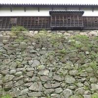 1133 「福岡城跡 石垣の世界」