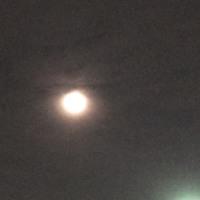 明日は満月です(*^_^*)