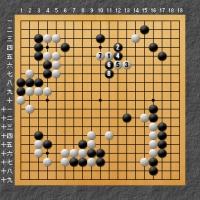 本因坊戦第2局1日目