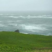 海は荒れ模様