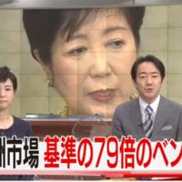 豊洲地下水調査 current topics(223)