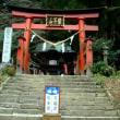 鷲子山上神社(ふくろうの神社)に紫陽花を見に行ってきました。