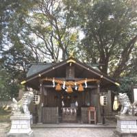 水戸弘道館の梅林(2017.2.25)