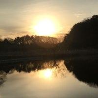 ため池からの朝陽