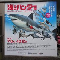 「海のハンター展」/科博(上野)