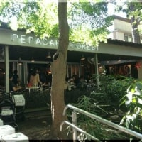 緑の森の中のレストランで打ち合わせ!