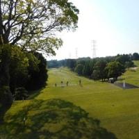 野球部のOB会の ゴルフコンぺ 雑感