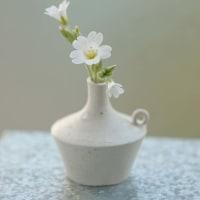 白い小さな花と…。