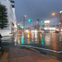 春の雨は虹色の雨・・・
