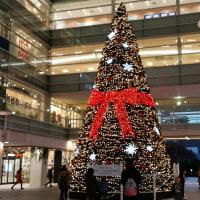 街はクリスマスツリ-に満ちている