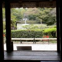 東山動植物園あき祭りで演奏 10/22 久しぶりに先生方にお会いして・・