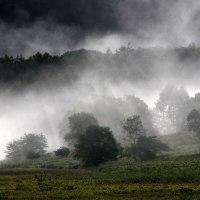 霧ヶ峰(池のくるみ)