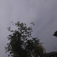 仙台の空5月24日、水曜日