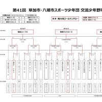 優勝 南川崎ゴールデンアロー【H28 草加・八潮交流大会】