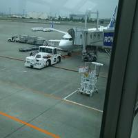 今日のとりあえず:北海道旅行最終日