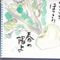 2017.2.4 酉年立春