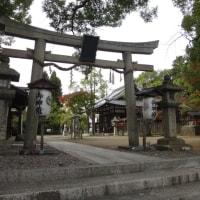 2015年 京都の東福寺の紅葉について 11月21日