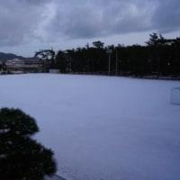 雪化粧 1.24