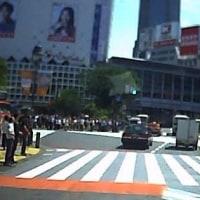 渋谷区にて「スクランブル交差点」