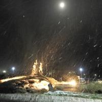 雪降り始めました。(1/13)