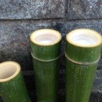 青竹の香り