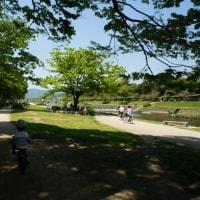 鴨川ピクニック