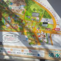 観梅 by 清水公園[千葉県]