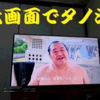 相撲観戦もイイケド…。