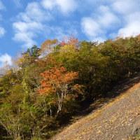 標高1900~2000m紅葉ライン