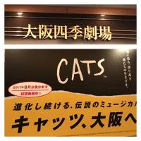 劇団四季・キャッツ♪
