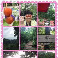 友と行く鎌倉 梅雨の一日