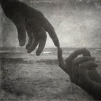 触れ合いはそっと指から