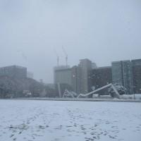 名古屋の雪景色