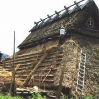 茅葺屋根の修理