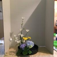 盛り花 直立 ベルフラワー 紫陽花 セイヨウノコギリソウ