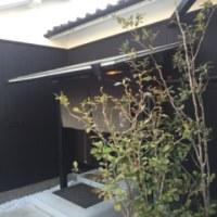 昨日は、  .treeプロジェクト修善寺に視察