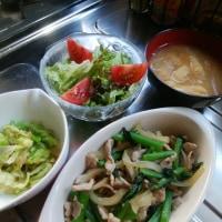 豚肉、小松菜、玉ねぎの生姜炒め