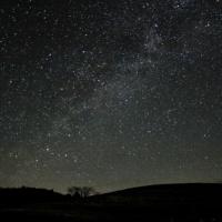 桜と星と流星群♪
