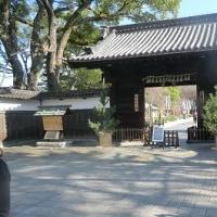 冬の徳川園
