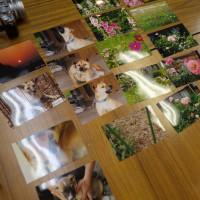 写真教室、一般質問質問席から 発達障害への取り組み編