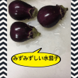 coco🐶頂き物(o^^o)