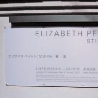 原美術館で、 『エリザベス ペイトン:Still life 静/生』 をみました。
