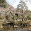 日野市: 京王百草(もぐさ)園  その2