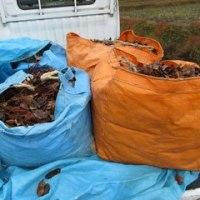 冬の堆肥づくり