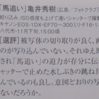 ② フォトコン 日本写真企画 : 亀井秀樹 氏