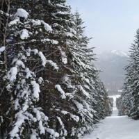 2017年初スキー1月2日2017