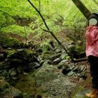祖谷川水系 アメゴ釣行