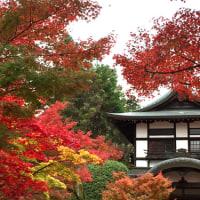 そうだ。京都へ行こう。