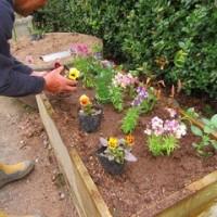 春の花壇づくり